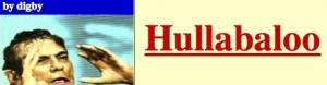 digbys hullabaloo logo